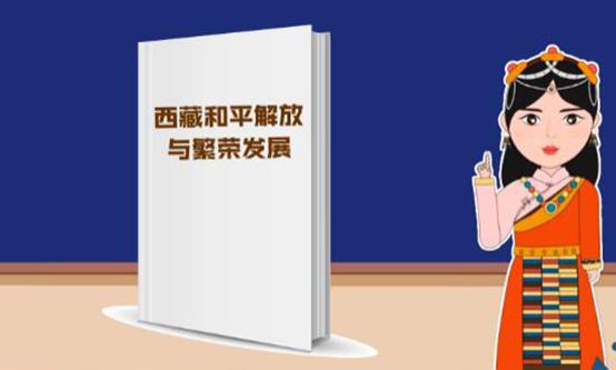 动画【观当下】丨从白皮书看西藏基本公共服务全面进步