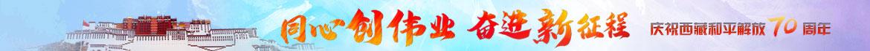 庆祝西藏和平解放70周年
