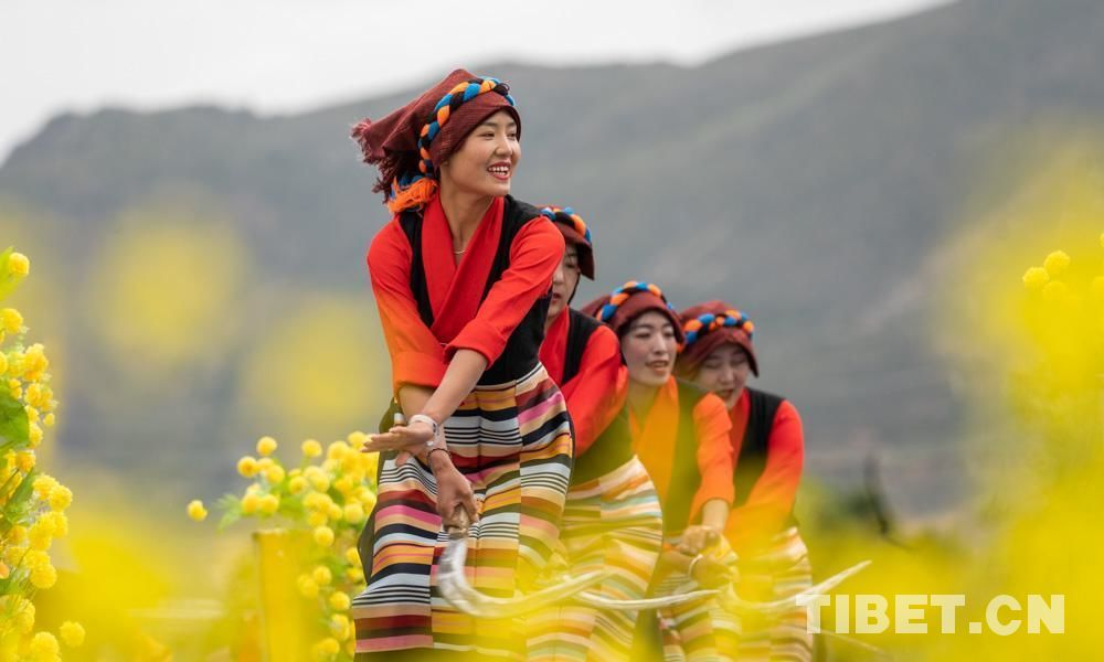 花海之中的文化旅游节