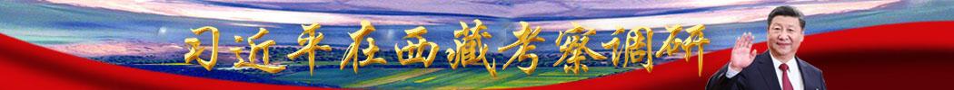 习近平总书记在西藏考察调研