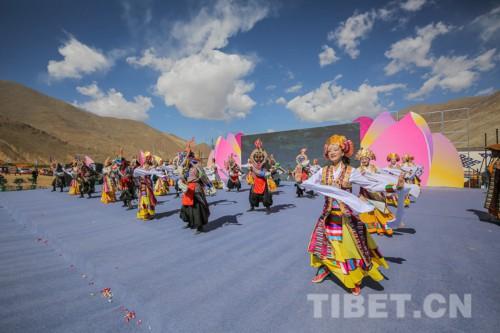 西藏南木林高原海棠节开幕