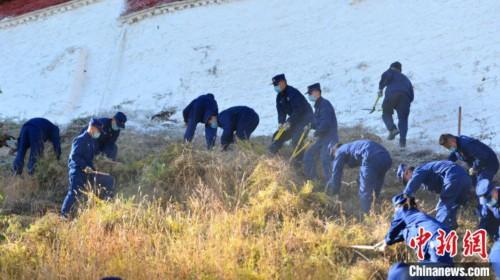 西藏布达拉宫进行一年一度防火除草