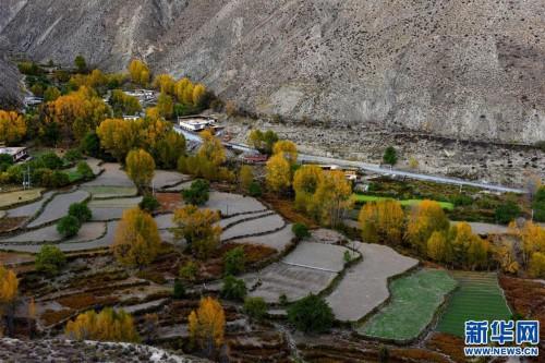 (環境)(8)川藏線上的美麗風景