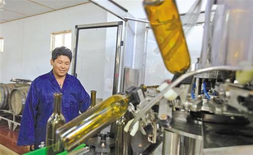 2019年西藏非公經濟擴量提質活力澎湃取得豐碩成果