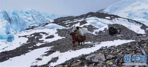 (2020珠峰高程测量·新华视界)(8)雪后珠峰东绒布冰川