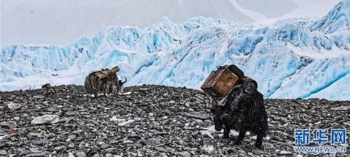 (2020珠峰高程测量·新华视界)(7)雪后珠峰东绒布冰川