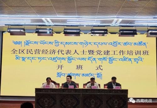 西藏民营经济代表人士暨党建工作专题培训班顺利开班