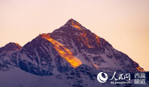守护珠峰原生态 保护区森林面积超过5万公顷