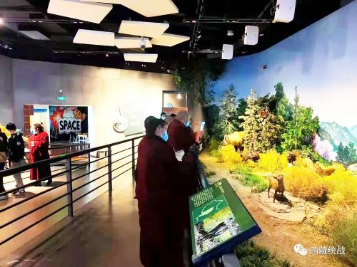 拉萨市城关区组织参观自然科学博物馆 激发僧尼爱国意识