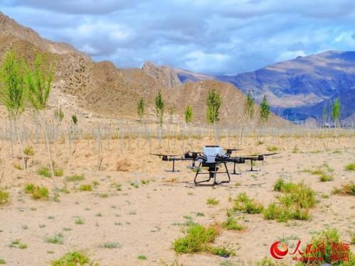 西藏首次使用无人机精准飞播造林种草