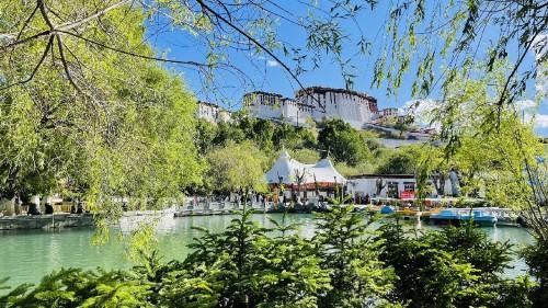 西藏拉萨:夏日的宗角禄康公园景色宜人