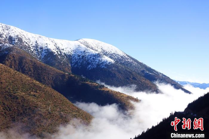 西藏吉塘镇现壮美云海 穿行其间宛入仙境